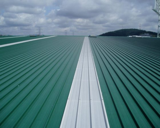 Giant Putra Height Seal Deck 120feet, roll on site