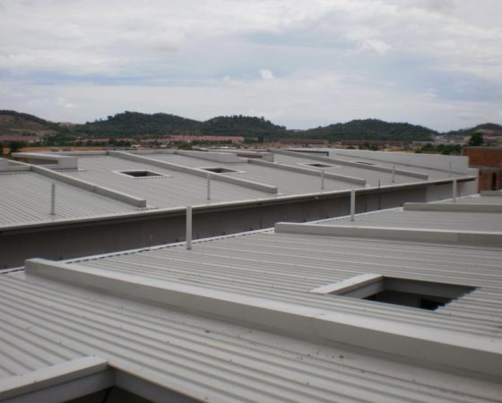 Metal Roofing for Houses